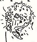 bande dessinée,bazooka productions,bien dégagé sur les oreilles bd,kiki picasso,loulou picasso,olivia clavel,lulu larsen,electric clito,jean rouzaud,jean-louis dupré,christian chapiron,médaille saint-christophe,journal libération,un regard moderne,groupe bazooka,revue mormoil,touss-bourrin,le cri qui tue