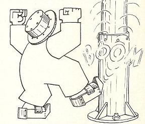 1975 05 OISEAU 4.jpg