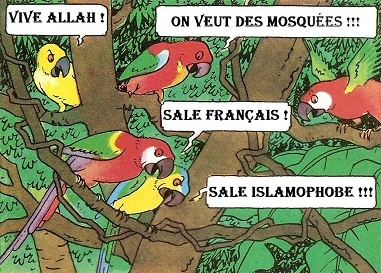PERROQUETS ISLAM.jpg