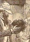1882 07 30 1.jpg