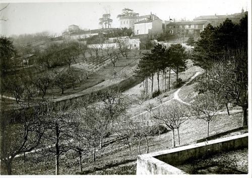 1 1933 avant les fouilles.jpg