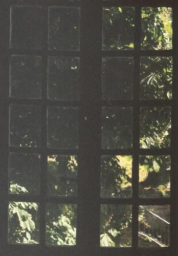 georges brassens,tonton georges,chanson française,yves montand,battling joe,montand les grands boulevards,jacques brel,les amoureux des bancs publics,michel houellebecq,guilde du disque,croix-rousse,café de la crèche,une jolie fleur dans une peau de vache,jacques prévert,houellebecq interventions,mourir pour des idées,tonton nestor